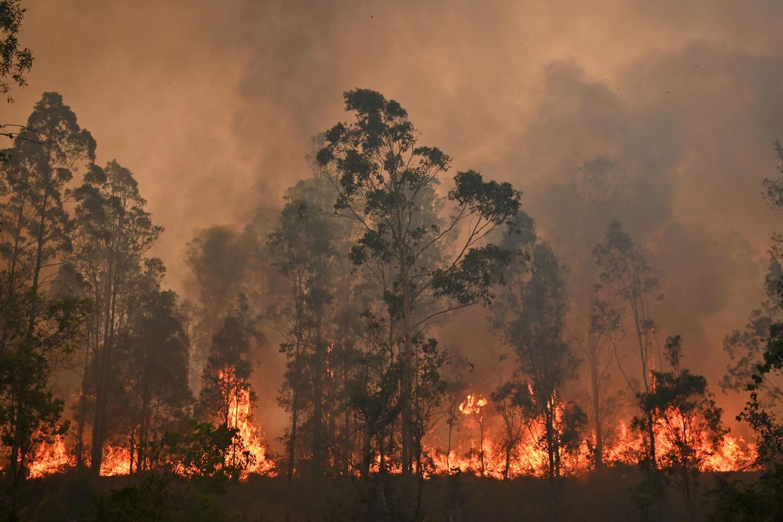 Bushfires; Australia; Black summer
